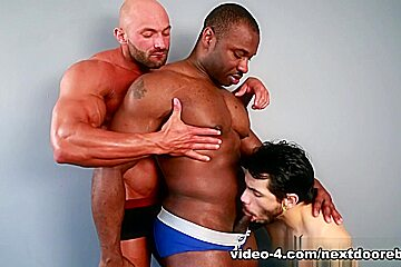 Marc Williams & Draven Torres & Max Chevalier in Posing for Pleasure XXX Video