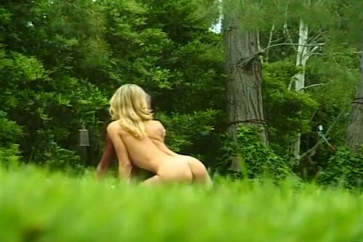 Porn zelda video b