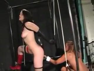 Porn free clips movie