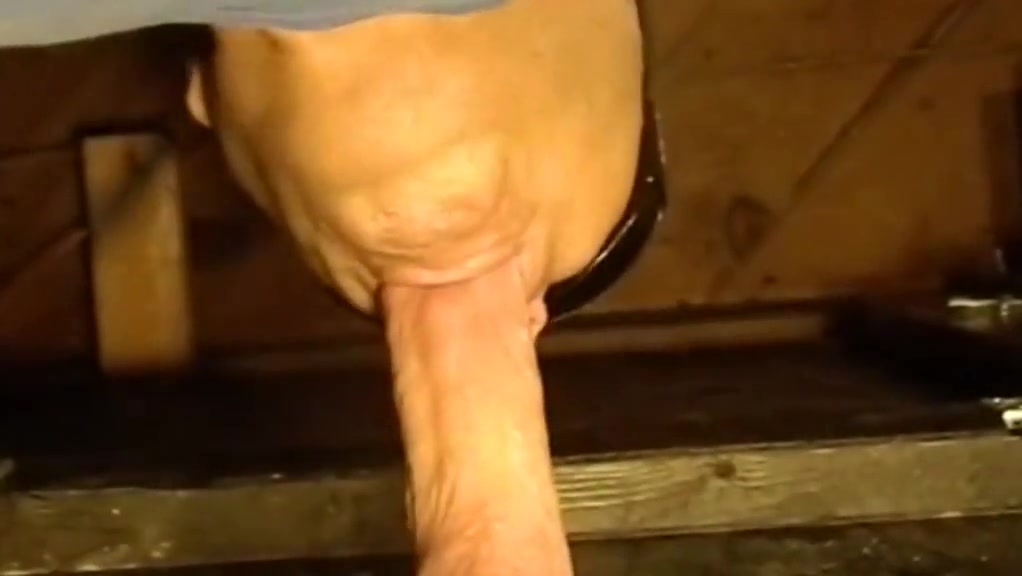 Gloryhole swallow pulsating load New york yankee suck jokes