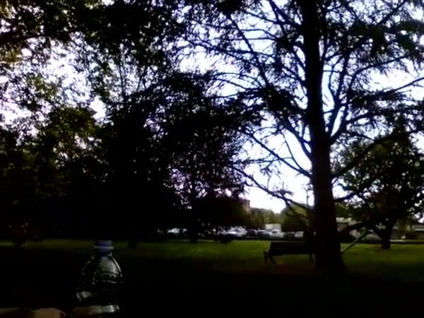 Kocalos - Pissing in a public park Pewdiepie plays guitar