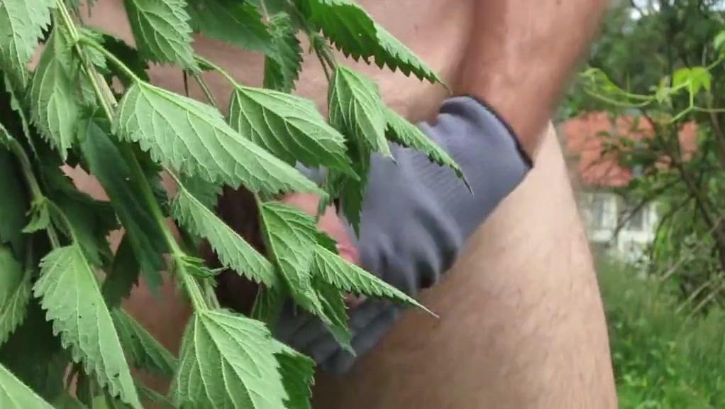 Self spanking stinging nettles Having sex with conjoined twins porn