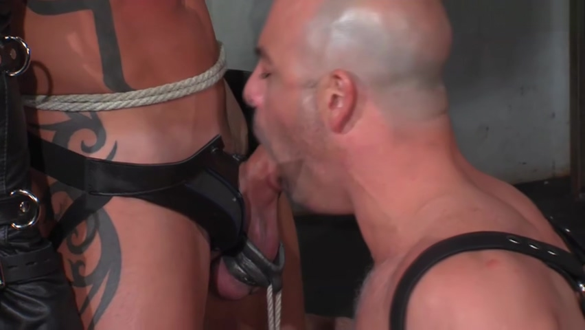 A slave with stretched balls drinks his Masters piss Dating a bi man