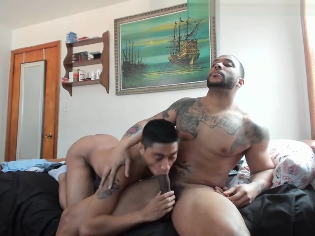 gay blowjob 69 sucking free monster boobs hhh