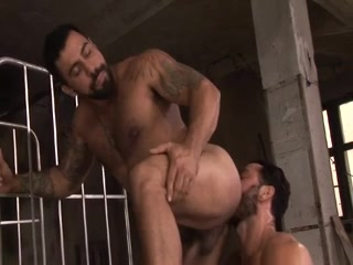mutual bearded pleasure teacher in porn long