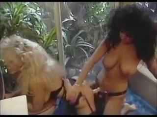 Lesbios fuckk BDSM sexx