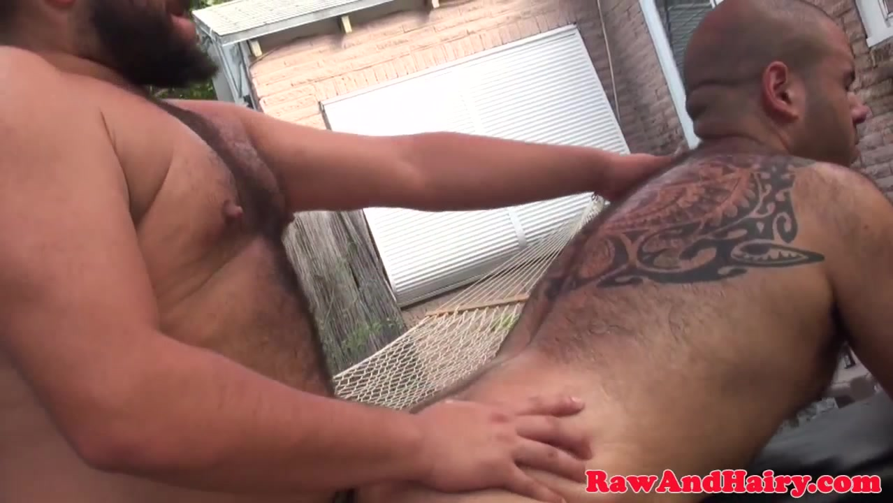 Heavyset bears love to breed outdoors nude girl hot spring
