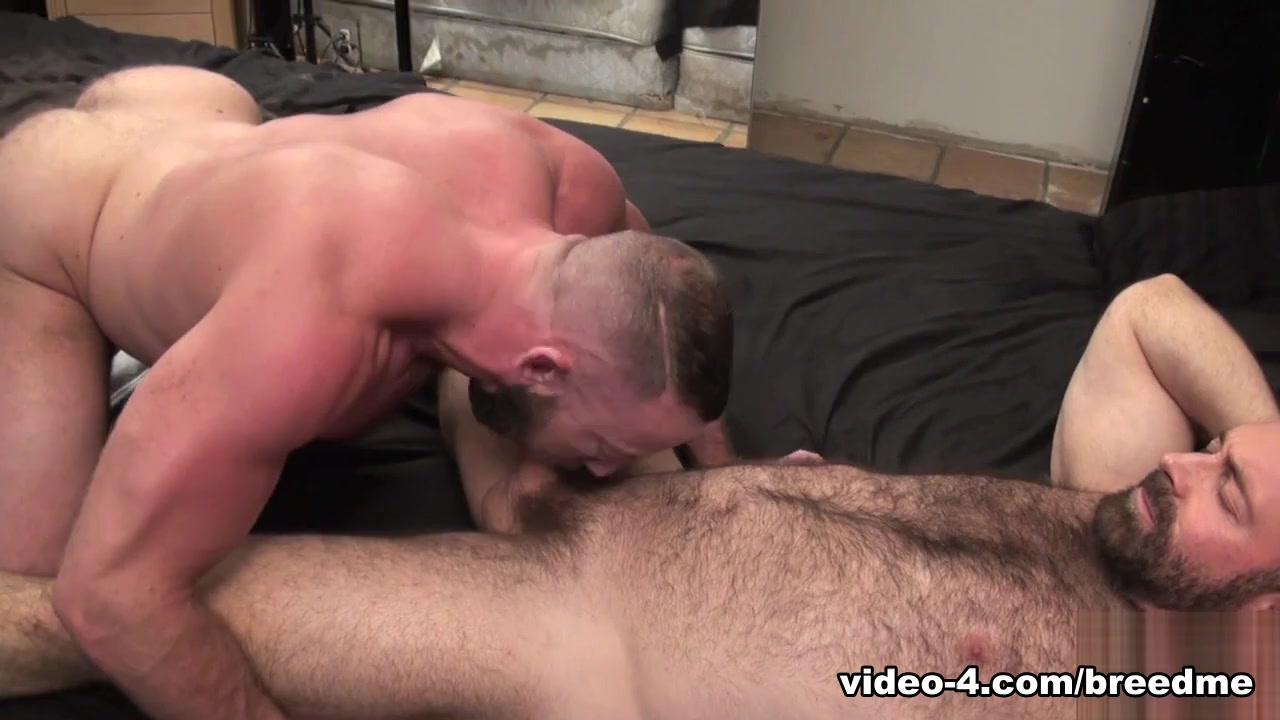 Brad Kalvo and Shay Michaels - BreedMeRaw Free african adult porn