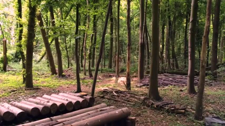 Nackt Wix und Spritzspiele im Wald Baby cumshot thumbs